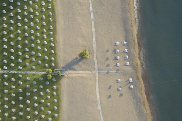Apollo Beach42